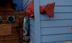 Reinstra-fishhead&tails2